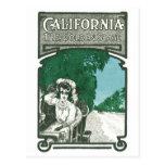 California The Golden State Postcard