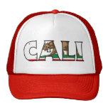 California Trucker Trucker Hats