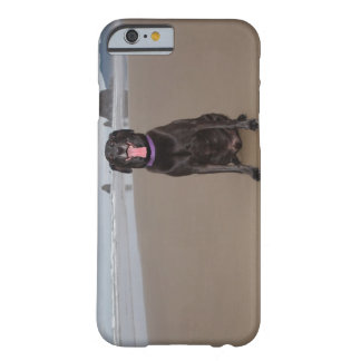 California, USA Barely There iPhone 6 Case