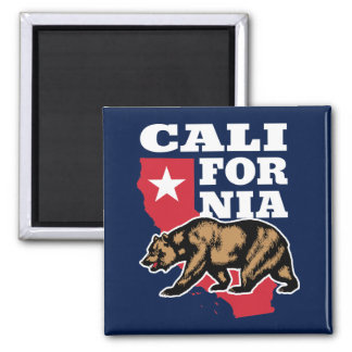 California USA Grizzly Bear and Star Square Magnet