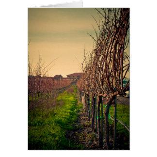 California Vineyards Card
