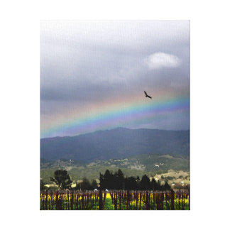 California Wine Country Rainbow--Flying High Gallery Wrap Canvas