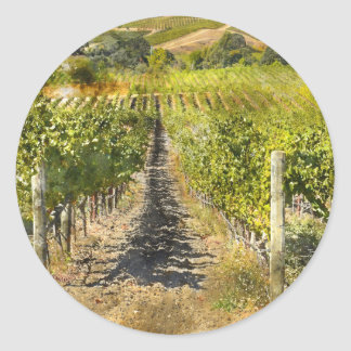 California Wine Vineyard Classic Round Sticker