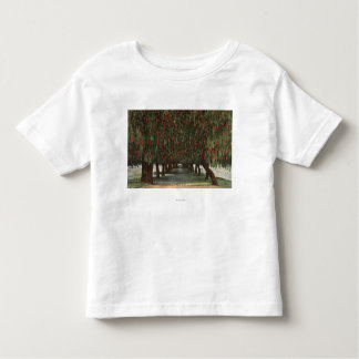 CaliforniaGroves of Pepper Trees Toddler T-Shirt