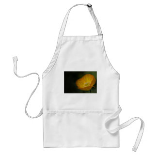 Californian Poppy Flower - After the Rain Standard Apron