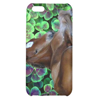 CALISTA IN CLOVER CASE FOR iPhone 5C