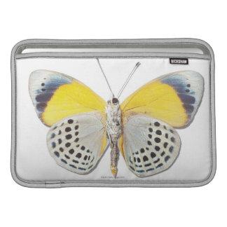 Calithea davisi sleeve for MacBook air
