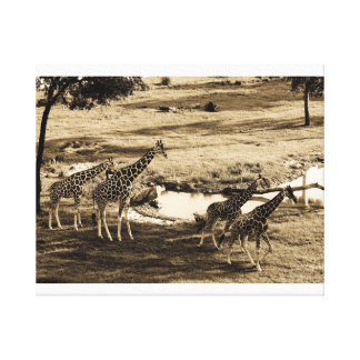 Call of the wild stretched canvas prints