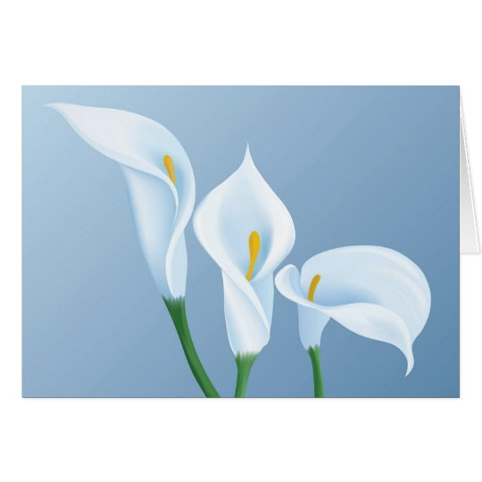 Calla flowers card