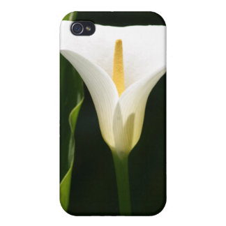 Calla Lily Cover For iPhone 4
