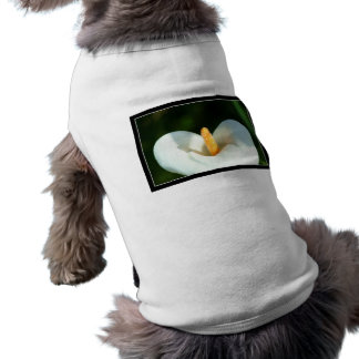 Calla Lily dog shirt