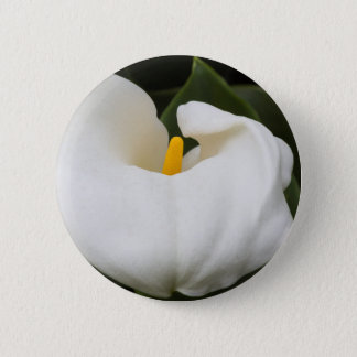 calla lily in the garden 6 cm round badge