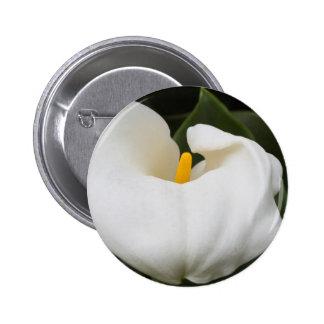 calla lily in the garden 6 cm round badge
