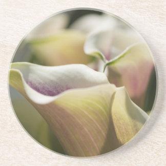 calla lily in the garden coaster