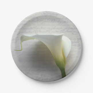 Calla lily on old handwriting paper plate