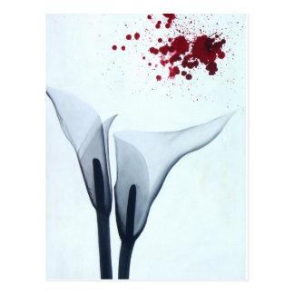 Calla Lily X-ray Postcards