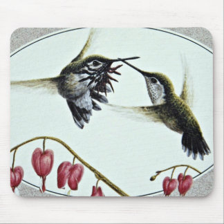 Calliope hummingbirds  flowers mouse pads