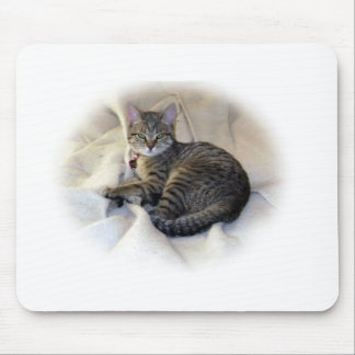 Calm & Content Mouse Mat
