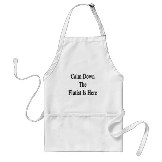 Calm Down The Flutist Is Here Aprons