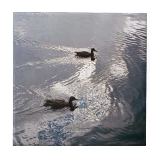 Calm Ducks Before the Storm Tile