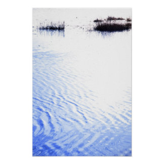 calm rippled water surface with rushes at sunset posters