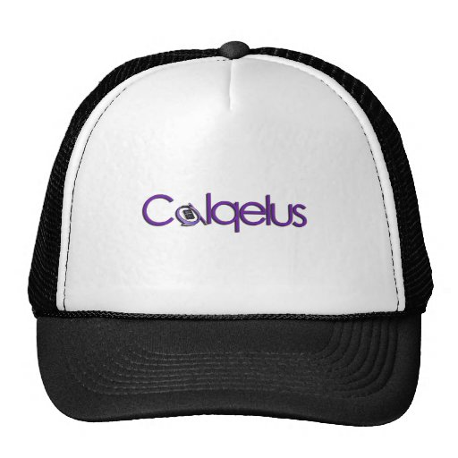 CALQELUS OFFICIAL WEAR MESH HATS
