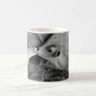 calves coffee mugs