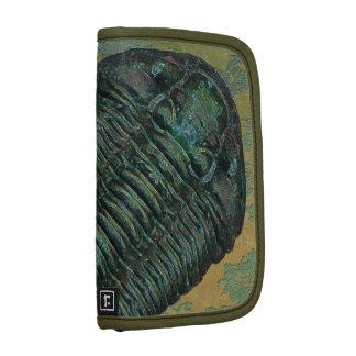 Calymene Niagarensis Trilobite Planner