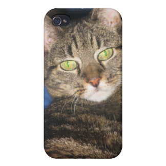 Calypso Kitty Sass Case iPhone 4 Covers