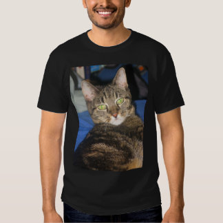 Calypso Kitty Sass Shirt