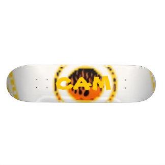 cam to go skate boards