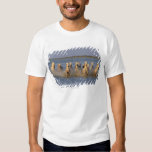 Camargue Horse (Equus caballus) T Shirt