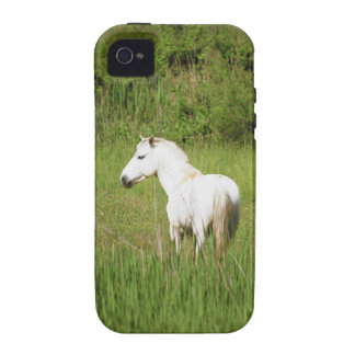 Camargue Horse in the Alpes Cote d Azur of the iPhone 4/4S Cover