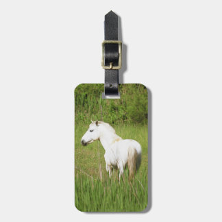 Camargue Horse in the Alpes Cote d'Azur of the Luggage Tag