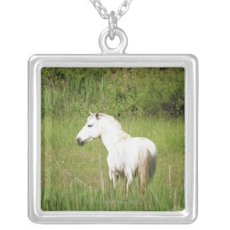 Camargue Horse in the Alpes Cote d'Azur of the Silver Plated Necklace