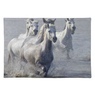 Camargue horses running on marshland to cross placemat