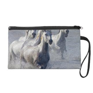 Camargue horses running on marshland to cross wristlet