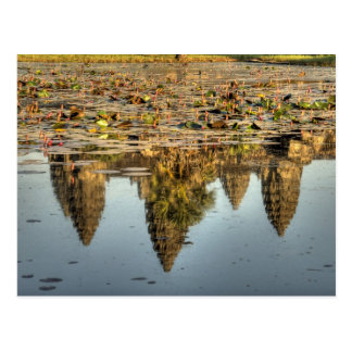 Cambodia, Angkor Wat. Reflection of temple Postcard