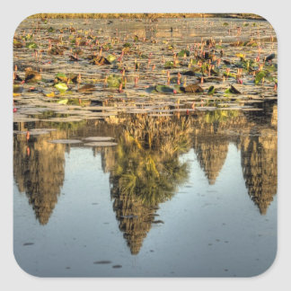 Cambodia, Angkor Wat. Reflection of temple Square Sticker