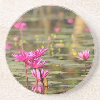 Cambodian pink waterlilies drink coaster