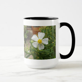 Cambridge Botanical Gardens Mug