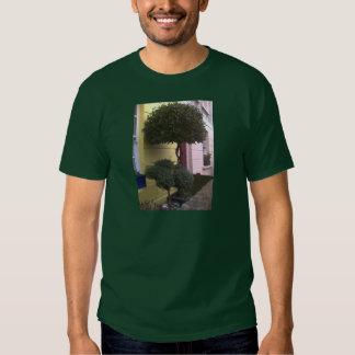 Camden Town Shirts