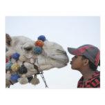 Camel and boy postcard
