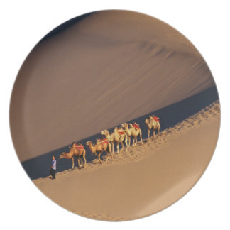 Camel caravan on the desert, Dunhuang, Gansu Plate