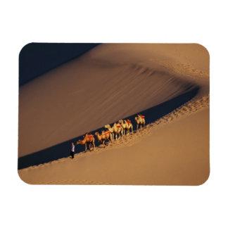 Camel caravan on the desert, Dunhuang, Gansu Rectangular Photo Magnet