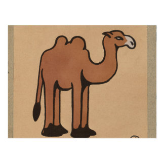 Camel - Colorful Antiquarian Book Illustration Postcard