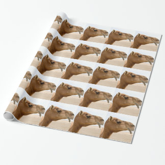Camel face wrapping paper