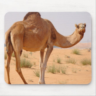 Camel for Arabs Mouse Pad