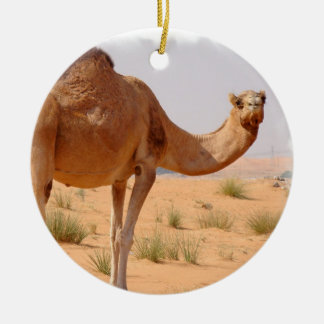 Camel for Arabs Ornament