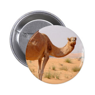 Camel for Arabs Round Button